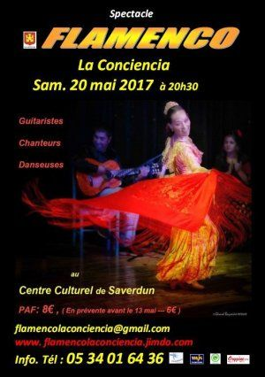 "Spectacle "" Flamenco La Conciencia"""